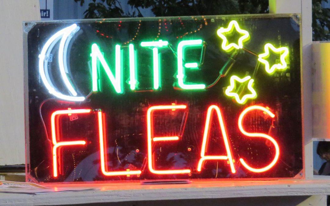 Union Grove Wisconsin Late Night Flea Market Saturday June 25, 2022